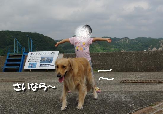 IMGP0971.jpg