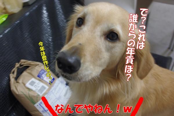 IMGP5185.jpg