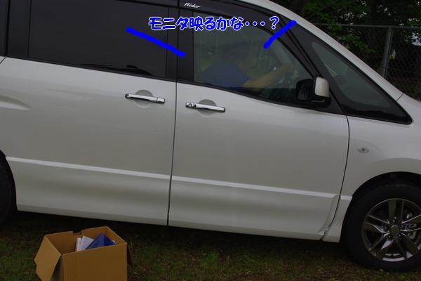 IMGP7305.jpg