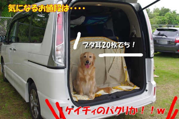 IMGP7329_20110625000852.jpg