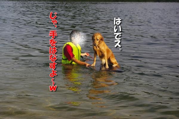 IMGP9306.jpg