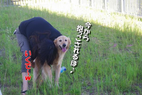IMGP9385.jpg