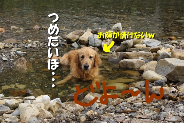 IMGP9729_20110722004713.jpg