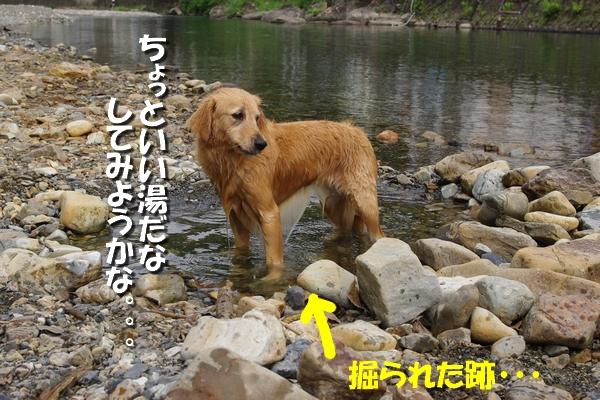 IMGP9730_20110722004746.jpg