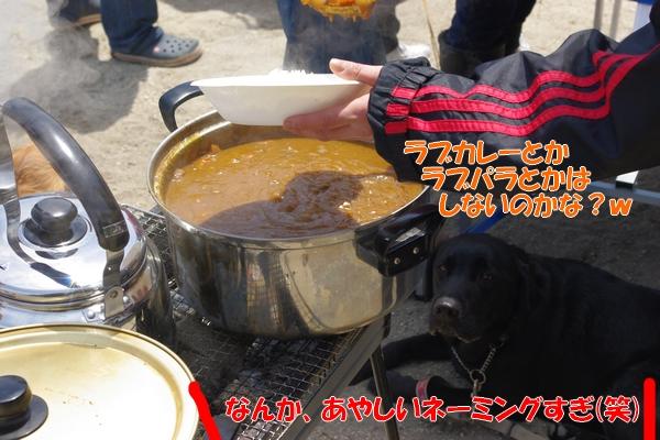 IMGP9843_20110513005945.jpg