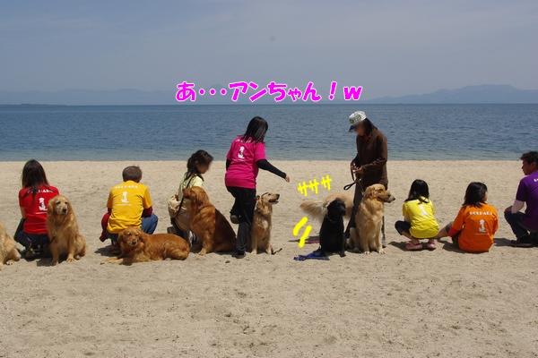 IMGP9855_20110518002848.jpg