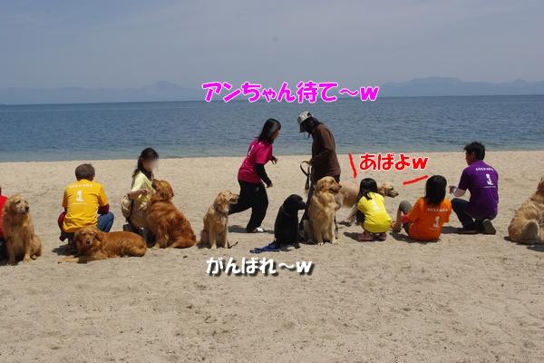 IMGP9856_20110518002848.jpg