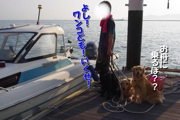 IMGP9927_20110804014034.jpg