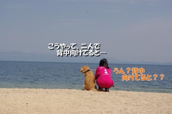 IMGP9955_20110513010110.jpg