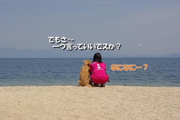 IMGP9956_20110513010109.jpg