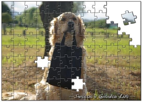 jigsaw36a8fbeff6d45ddcc6c8933f6038c12ad81f7cd5.jpg