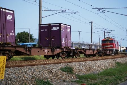 DSC00487.jpg