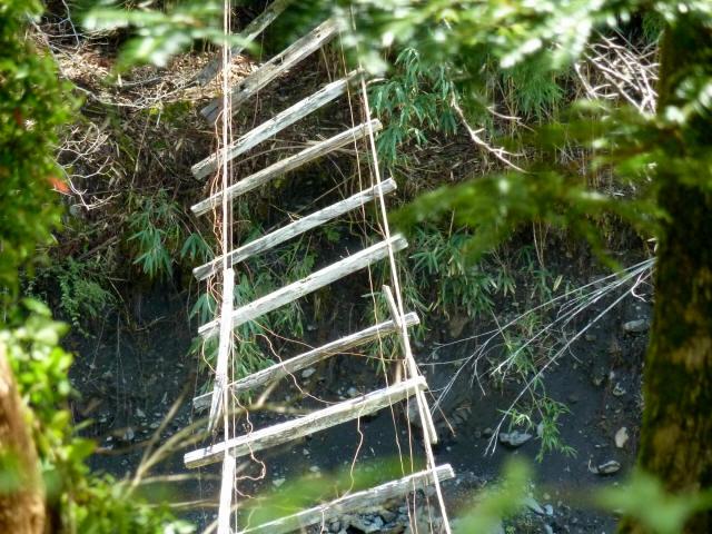 中根の吊橋4