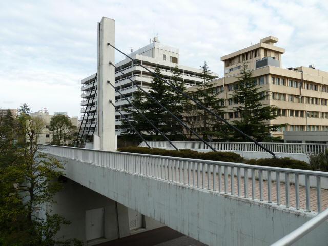 福井中央公園歩道橋5
