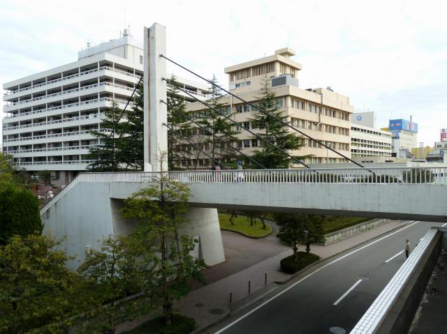 福井中央公園歩道橋6