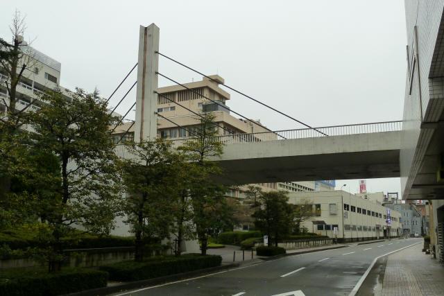 福井中央公園歩道橋8