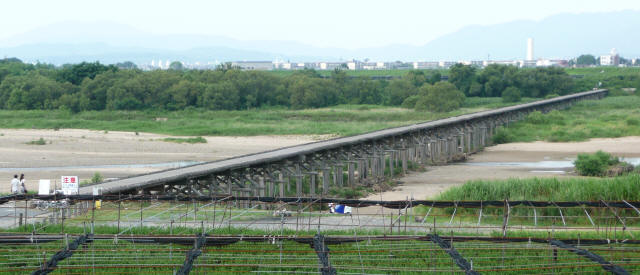 上津屋橋(流れ橋)9