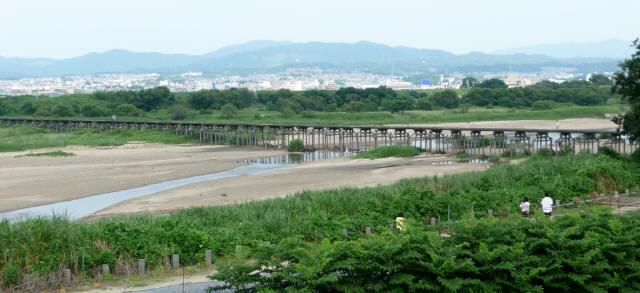 上津屋橋(流れ橋)10