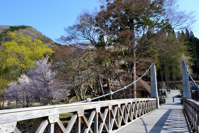 大出の吊橋1