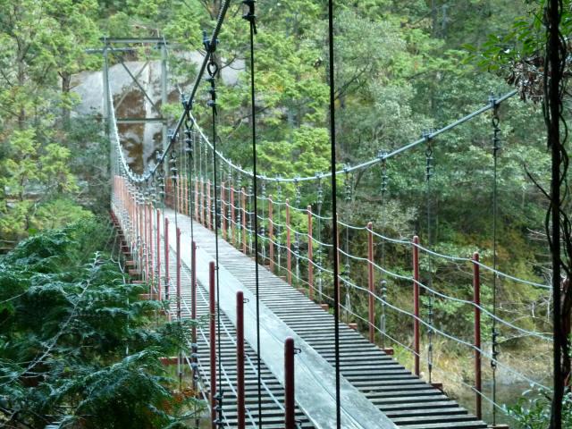 大藪谷の吊橋6