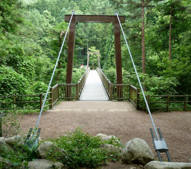 鳥川渓谷橋8