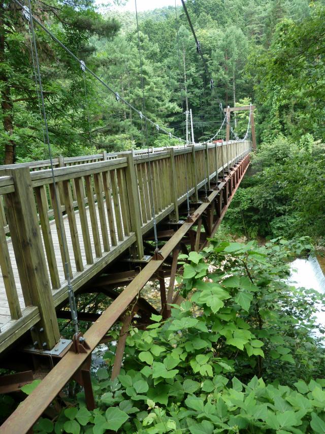 鳥川渓谷橋7