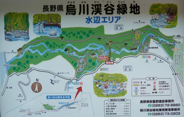 鳥川渓谷橋4