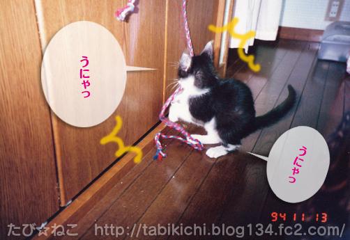 20110520-2.jpg