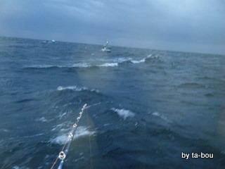 20100314今日の海