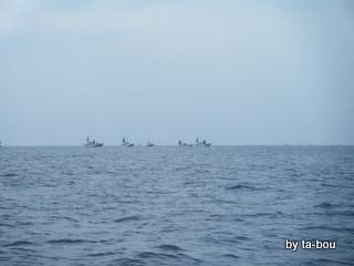 20100424剣崎沖船団