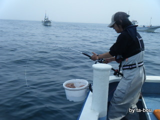 201005050鯛ファイト中