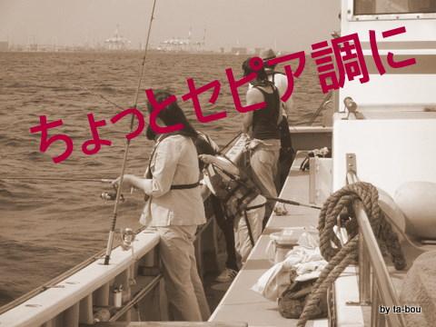 20100710キス釣り2