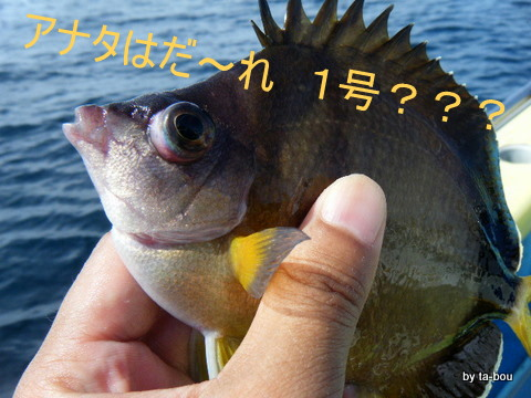 20100827誰1