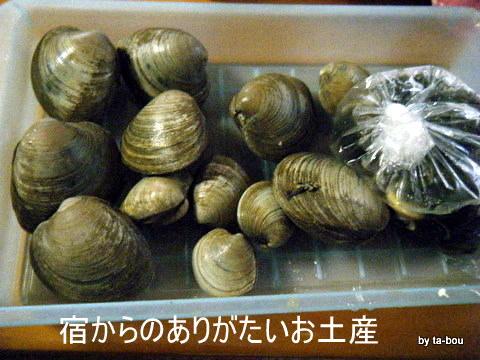 20100923ボンビノス貝
