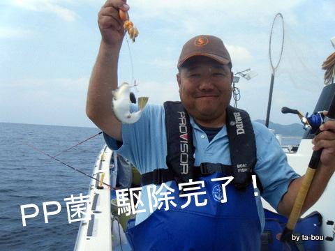 20101016まるかつさん3