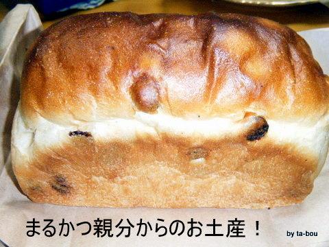 20101114パン