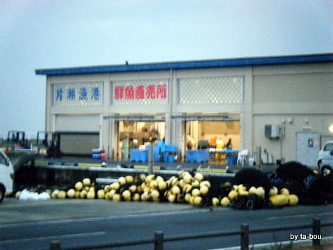 20101126片瀬漁港