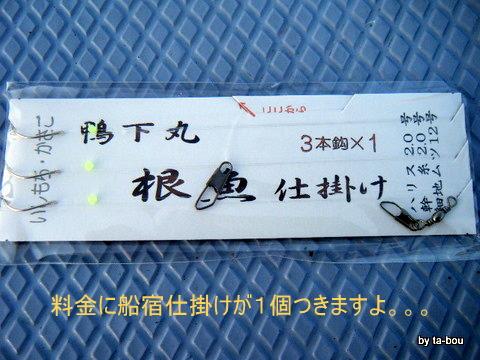 20111211鴨下丸イシモチしかけ