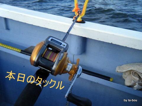 20111211本日のタックル
