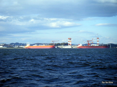 20111211イシモチ風景