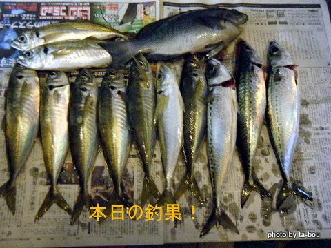 20100103本日の釣果