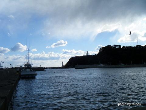 20110116港の風景