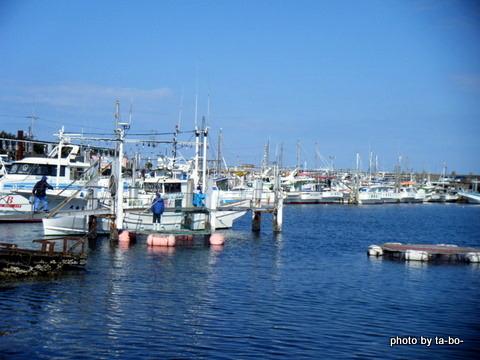 20110219鹿島港