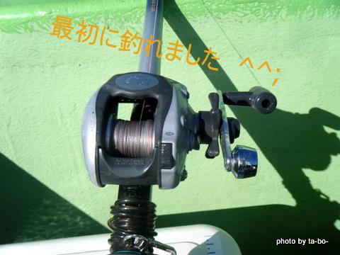 20110305初物
