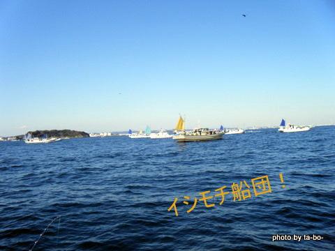 20110305イシモチ船団
