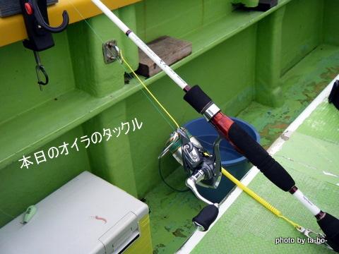 20110505本日のタックルパパ