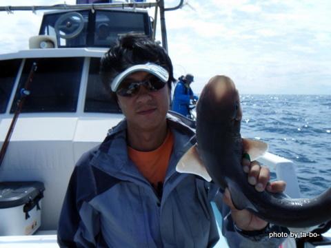 20110923サメ3