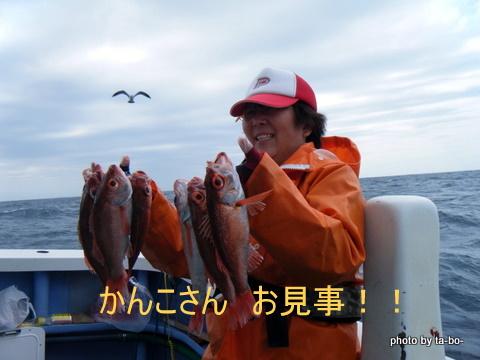 20101001カンコさんすげ