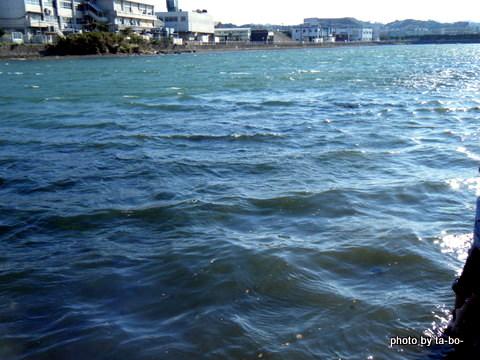 20111016風バチャバチャ