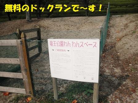 竜王公園わんわんスペース